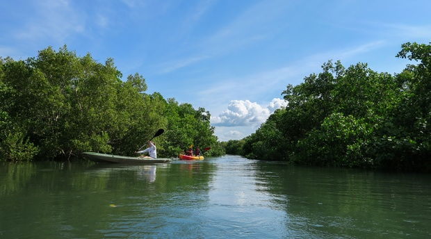 Kayak the Msangazi River or the Indian Ocean in Tanzania from Kijongo Bay, close to Saadani National Park and the historical town of Pangani